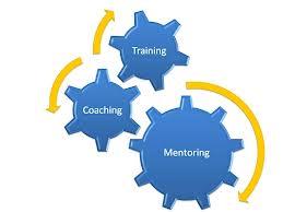 Mentoring II