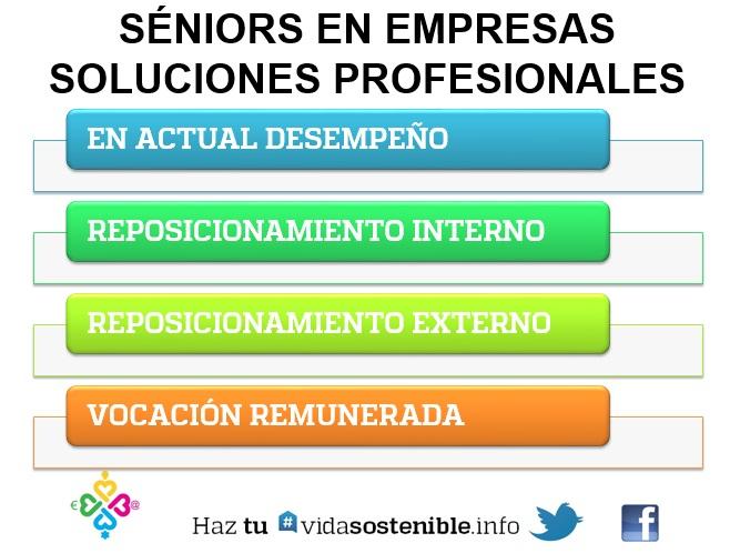 Séniors en Empresas. Soluciones Profesionales