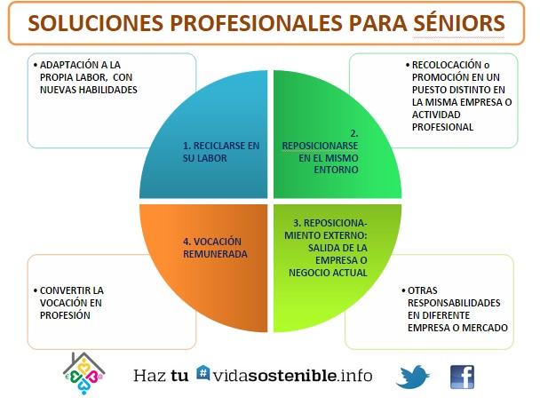 Soluciones profesionales para Séniors. Sinóptico